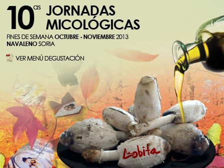 Mi recomendación: Restaurante La Lobita (Soria)